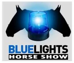 BlueLightsHS.png